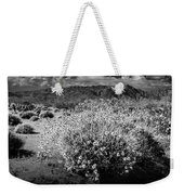 Wild Desert Flowers Blooming In Black And White In The Anza-borrego Desert State Park Weekender Tote Bag
