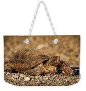 Wild Desert Tortoise Saguaro National Park Weekender Tote Bag by Steve Gadomski