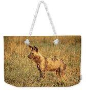 Wild Dog Of Botswana Weekender Tote Bag