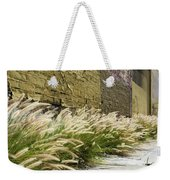 Wild Grass Along An Alley Wall Weekender Tote Bag