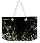 Wild Grass In The Sunlight Weekender Tote Bag