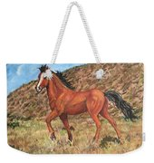 Wild Horse In Virginia City, Nevada Weekender Tote Bag