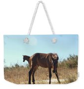 Wild Horses Desert Of Mexico Weekender Tote Bag