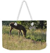 Wild Mountain Lupine Weekender Tote Bag