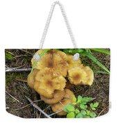 Wild Mushrooms 1 Weekender Tote Bag