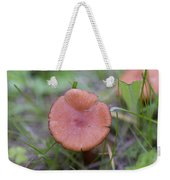 Wild Mushrooms 3 Weekender Tote Bag