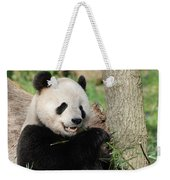 Wild Panda Bear Eating Bamboo Shoots While Leaning Against A Tre Weekender Tote Bag
