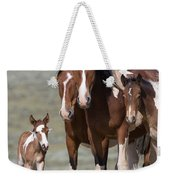 Wild Pinto Family Weekender Tote Bag