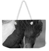 Wild Pinto Stallion Weekender Tote Bag