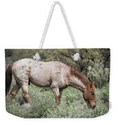 Wild Roan Stallion  Weekender Tote Bag