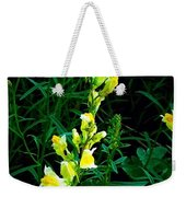 Wild Yellow Flowers On Black Background Weekender Tote Bag