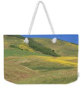 Wildflower Display - Salisbury Potrero Weekender Tote Bag