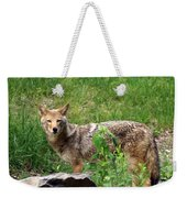 Wiley Coyote Weekender Tote Bag