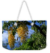 Wilhelmina Tenney Rainbow Shower Tree Makawao Maui Flowering Trees Of Hawaii Weekender Tote Bag