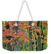 Windy Day Autumn Colors Weekender Tote Bag