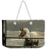 Windy In Mane Weekender Tote Bag