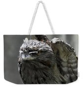 Wings Above A Tawny Frogmouth That Looks Interesting Weekender Tote Bag