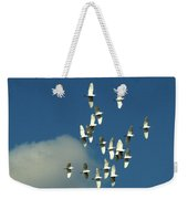 Wings Of White Weekender Tote Bag