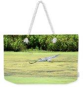 Wingspan Weekender Tote Bag
