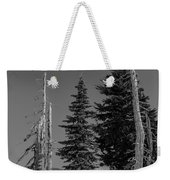 Winter Alpine Trees, Mount Rainier National Park, Washington, 2016 Weekender Tote Bag