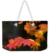 Winter Approaches... Weekender Tote Bag