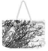 Winter Beckons Weekender Tote Bag