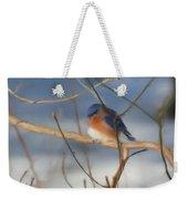 Winter Bluebird Art Weekender Tote Bag