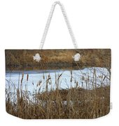 Winter Cattails  Weekender Tote Bag