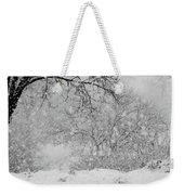 Winter Dream Weekender Tote Bag