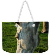 Winter Horse 3 Weekender Tote Bag