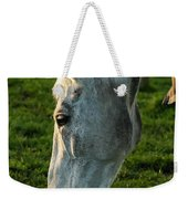 Winter Horse 4 Weekender Tote Bag