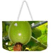 Winter Melon In Garden 2 Weekender Tote Bag