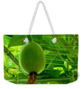 Winter Melon In Garden 3 Weekender Tote Bag