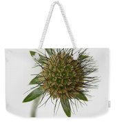 Winter Pin Cushion Plant Weekender Tote Bag