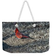 Winter Redbird Weekender Tote Bag