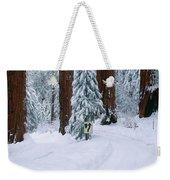 Winter Road Into Sequoia National Park Weekender Tote Bag