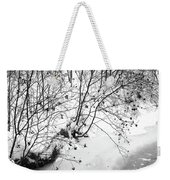 Winter Shrubs, New Hampshire Weekender Tote Bag
