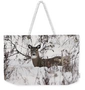 Winter Slumber Weekender Tote Bag