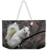 Winter Squirrel Weekender Tote Bag by William Selander
