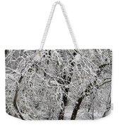 Winter Storm Skylar Weekender Tote Bag