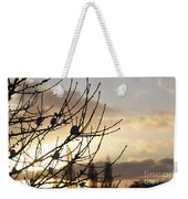 Winter Sun 3 Weekender Tote Bag