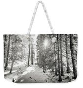 Winter Sunshine Forest Shades Of Gray Weekender Tote Bag