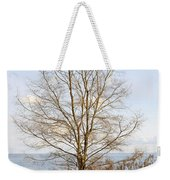 Winter Tree On Shore Weekender Tote Bag