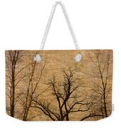Winter Trees In The Bottomlands 2 Weekender Tote Bag