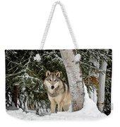 Winter Visitor Weekender Tote Bag