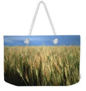 Winter Wheat In Linn, Kansas Weekender Tote Bag