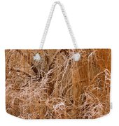 Winter Willow Branches Weekender Tote Bag