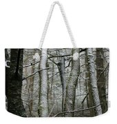 Wintery Day Weekender Tote Bag