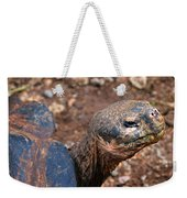 Wise Old Tortoise Weekender Tote Bag