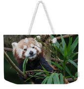 Wizened Red Panda Weekender Tote Bag